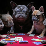 Top 6 Gambling OR Casino Superstitions Around the World